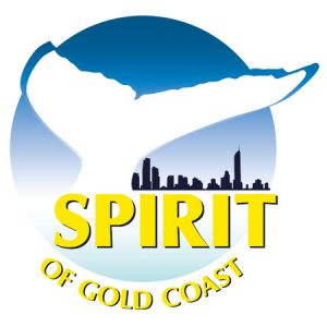 Spirit of Gold Coast Whale Watching - Attractions Melbourne