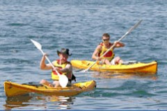Manly Kayaks - Attractions Melbourne