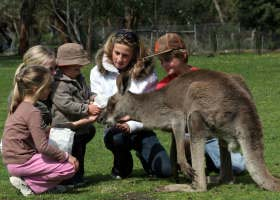 Gumbuya Park - Attractions Melbourne