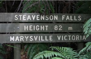 Stevensons Falls - Attractions Melbourne