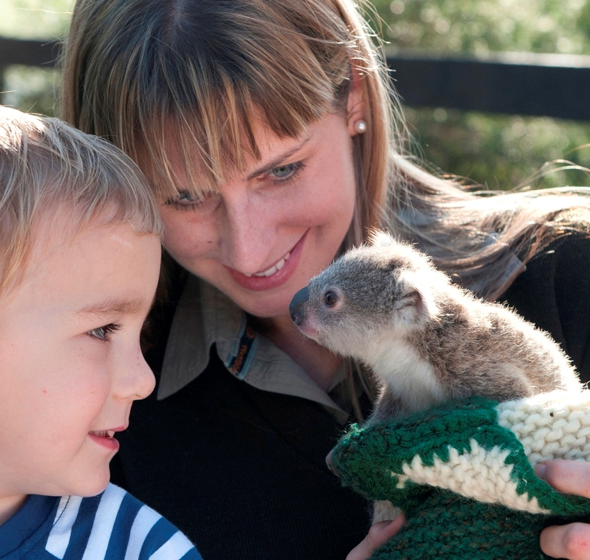 Australian Reptile Park - Attractions Melbourne