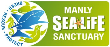 Manly SEA LIFE Sanctuary - Attractions Melbourne