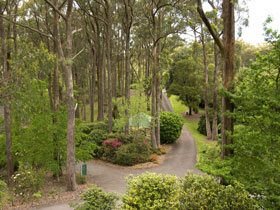 Mount Lofty Botanic Garden - Attractions Melbourne