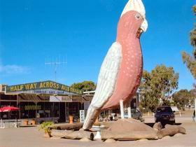 The Big Galah - Attractions Melbourne