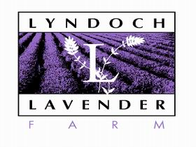Lyndoch Lavender Farm and Cafe - Attractions Melbourne
