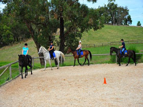 Megan Jones Riding School and Trail Rides - Attractions Melbourne