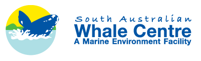 South Australian Whale Centre - Attractions Melbourne