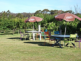 Cerise Brook Orchard  Family Golf - Attractions Melbourne
