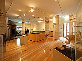 Tasmanian Tiger Exhibition - Attractions Melbourne