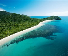 Cape Tribulation Daintree National Park - Attractions Melbourne