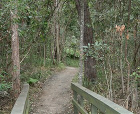 Springwood Conservation Park - Attractions Melbourne