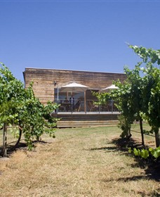 Shantell Vineyard - Attractions Melbourne