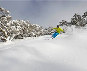 Mt Buller and Mt Stirling Alpine Resort - Attractions Melbourne