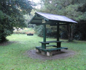 Pine Creek State Forest - Attractions Melbourne