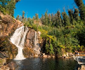 Steavenson Falls Marysville - Attractions Melbourne