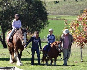 Bathurst Farm Experience - Attractions Melbourne