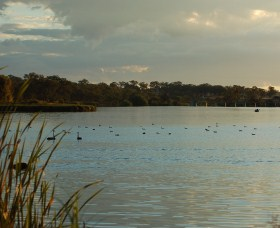 Lake Inverell Reserve - Attractions Melbourne