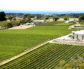 Paringa Estate Winery and Restaurant - Attractions Melbourne