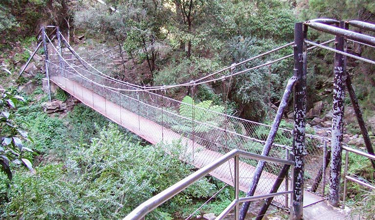 Jenolan River walking track - Attractions Melbourne