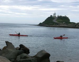 Newcastle Kayak Tours - Attractions Melbourne