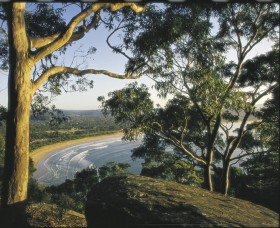 Ocean Beach Umina - Attractions Melbourne