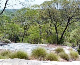 White Mountains National Park - Attractions Melbourne
