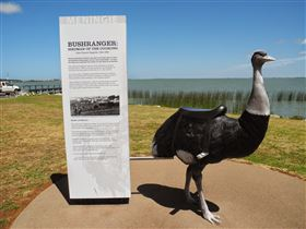 Birdman of the Coorong - Attractions Melbourne