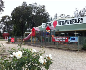The Big Strawberry - Attractions Melbourne