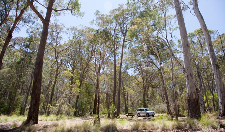 Coolah Tops National Park - Attractions Melbourne