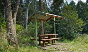 Devils Hole lookout walk and picnic area - Attractions Melbourne