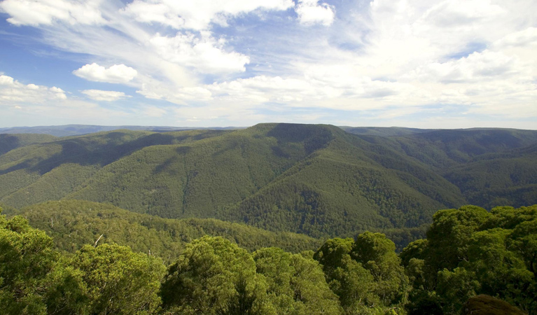 Barrington Tops National Park - Attractions Melbourne