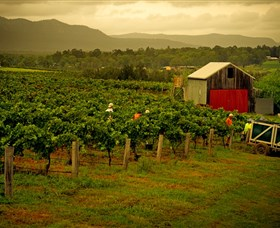 Around Hermitage Wine and Food Trail Hunter Valley - Attractions Melbourne