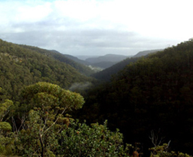 Nattai Gorge Lookout - Attractions Melbourne
