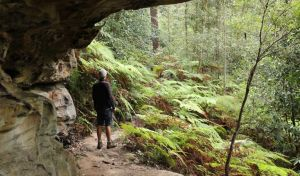Dharug National Park - Attractions Melbourne
