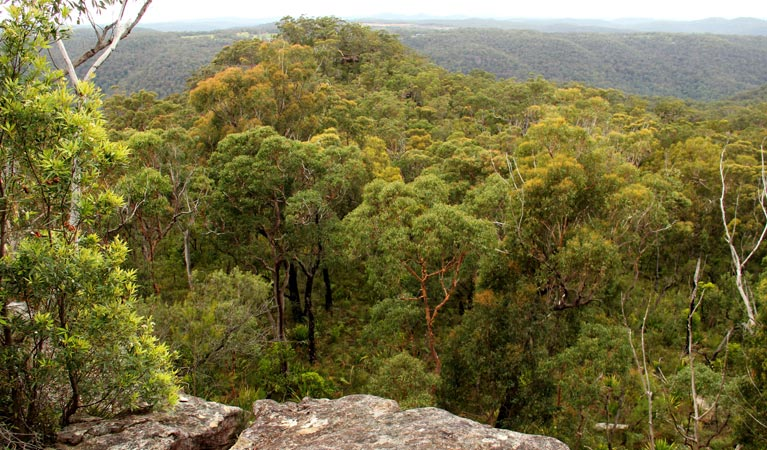 Mount Olive lookout - Attractions Melbourne