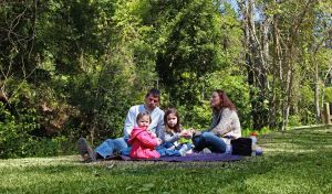 Hidden Treasure picnic area - Attractions Melbourne