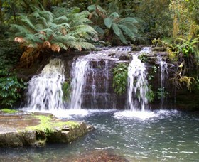 Barrington Tops National Park Walks - Attractions Melbourne