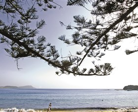 Terrigal Beach - Attractions Melbourne
