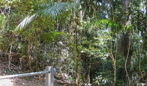 Goorgana walking track - Attractions Melbourne