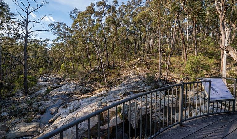 Myanba Gorge walking track - Attractions Melbourne