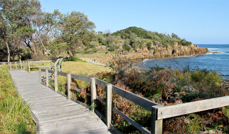 Mimosa Rocks walking track - Attractions Melbourne