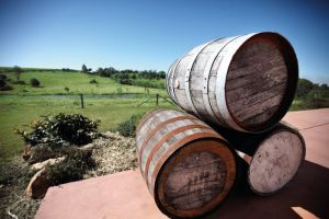 Childers Wine Trail - Attractions Melbourne