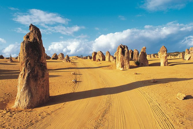 Pinnacles Desert Koalas and Sandboarding 4WD Day Tour from Perth - Attractions Melbourne