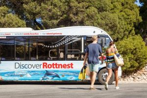 Rottnest Island Tour from Perth or Fremantle including Bus Tour - Attractions Melbourne