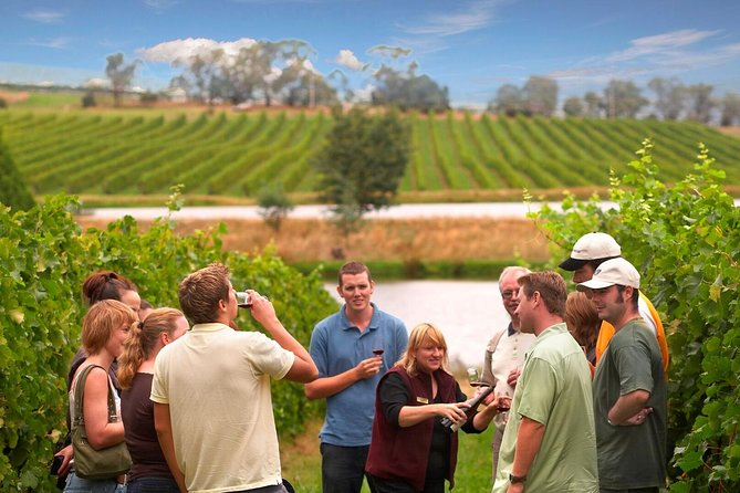 Yarra Valley Wine and Winery Tour from Melbourne - Attractions Melbourne