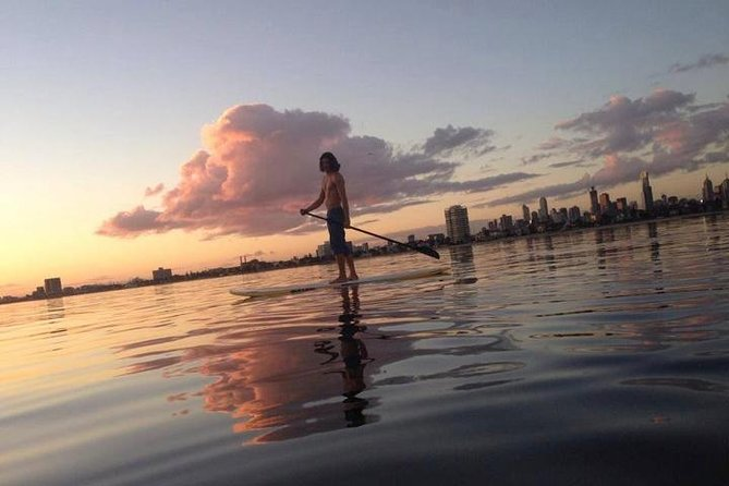 St Kilda Stand-Up Paddle Board Rental - Attractions Melbourne