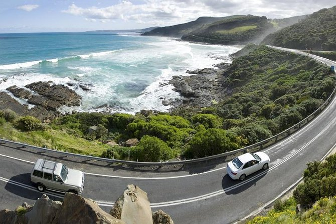 The Unique Great Ocean Road - English Speaking Guide - Attractions Melbourne