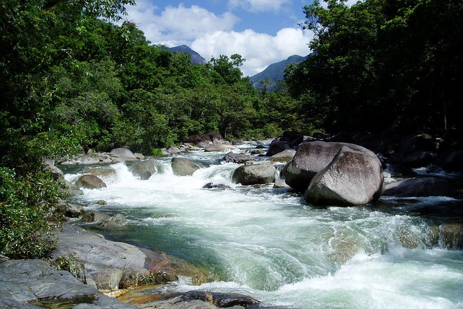 Daintree Rainforest Cape Tribulation Mossman Gorge in a day - Attractions Melbourne