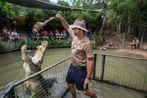 Hartley's Crocodile Adventures Day Trip from Cairns - Attractions Melbourne