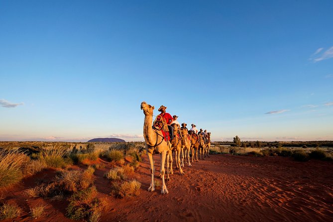 Uluru Camel Express Sunrise or Sunset Tours - Attractions Melbourne